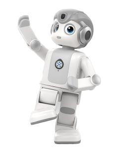 UBTECH Alpha Mini Humanoid Robot