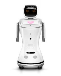 SANBOT Elf Business Service Robot