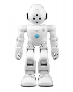 UBTECH Lynx Humanoid Robot